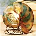 Deco Glow Nautilus Hand-Painted & Natural Capiz Shell Tea Light Holder SSV2270