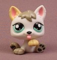 Littlest Pet Shop #1876 White Puppy Dog With Aqua Blue Eyes. One Tan Ear and One Tan Paw