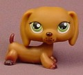Littlest Pet Shop #139 Blemished Chocolate Brown Dachshund Puppy Dog With Green Eyes