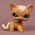 Littlest Pet Shop #1170 Brown Short Hair Kitty Cat Kitten With Aqua Blue & Green Eyes