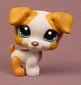Littlest Pet Shop #1093 White & Orange Brown Jack Russell Terrier Puppy Dog Blue Eyes