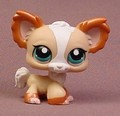 Littlest Pet Shop #1082 Tan & White Chihuahua Puppy Dog With Dark Blue Eyes, Journal