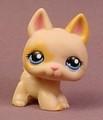 Littlest Pet Shop #1447 Tan & Light Brown German Shepherd Puppy Dog With Blue Eyes