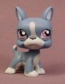 Littlest Pet Shop #1025 Blue Gray & White Boston Terrier Puppy Dog With Purple Eyes