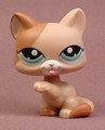 Littlest Pet Shop #1363 Tan & Brown Short Hair Kitty Cat Kitten With Blue Eyes, Licking Paw