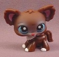Littlest Pet Shop #219 Dark Brown Chihuahua Puppy Dog with Blue Eyes, 2005 Hasbro