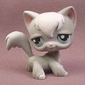 Littlest Pet Shop #345 Gray Long Hair Kitten Kitty Cat with White Bangs & Blue Eyes, 2007 Hasbro