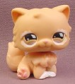 Littlest Pet Shop #490 Light Orange Tan Persian Kitten Kitty Cat with White Around Eyes, 2007