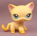 Littlest Pet Shop #339 Raceabout Ranch Orange Short Hair Kitten Kitty Cat with Blue Eyes, 2006