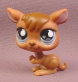 Littlest Pet Shop #682 Kangaroo with Dark Brown Hair & Blue Eyes, 2007 Hasbro