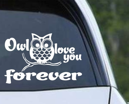 Owl 11 - Love You Forever