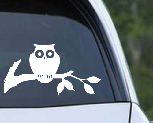 Owl 12 - On a Branch