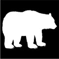 bear silhouette.jpeg