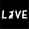love chihuahua.jpeg
