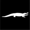 alligator silhouette.jpeg
