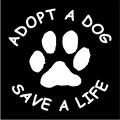 adopt a dog save a life.jpeg