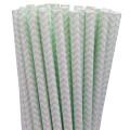 Mint Green Chevron Paper Straws.jpeg