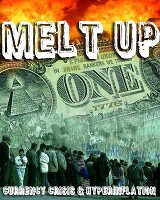 meltup-dvd.jpeg