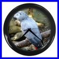 Wall Clock AFRICAN GREY PARROT Bird Pet Animal Zoo Boys (11776710)