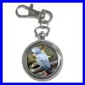 Key Chain Pocket Watch AFRICAN GREY PARROT Bird Pet Vet (12155670)