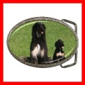 Chrome Metal Belt Buckle AFGHAN HOUND DOG Vet Puppy Pet (21603972)