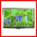 Cigarette Card Money Box GERMANDER SPEEDWELL Flower New (16343905)