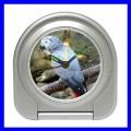 Desk Clock AFRICAN GREY PARROT Bird Pet Animal Zoo Boys (11828857)