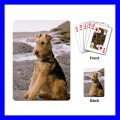 Playing Cards Poker Deck AIREDALE TERRIER Dog Puppy Pet Animal (15481437)