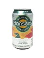 Hansen's Ginger Ale.jpeg