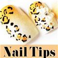 Thumb_54138-9-THUMB 12pcs pre-design nail tips.jpg 6/2/2011