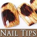 54206-1-THUMB 60pcs pre-design false nail tips.jpeg