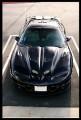 1998-2002 Pontiac Trans Am WSQ Ram Air Hood