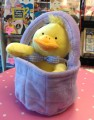 Ducky-in-basket.jpeg