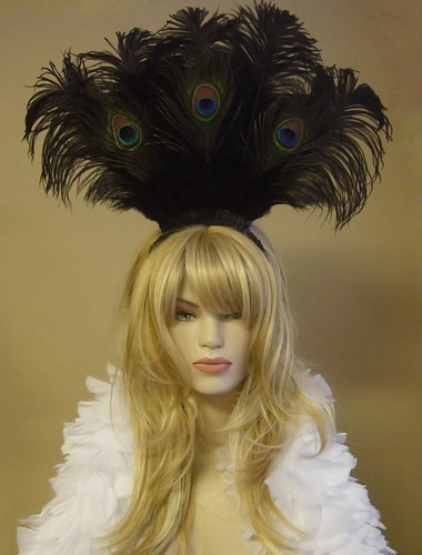 PeacockHeaddress.jpeg