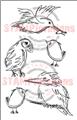 SmallBirds-preview