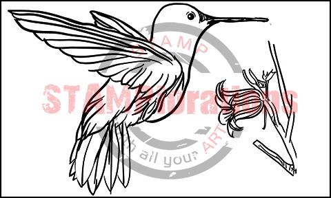 HummingbirdLARGE