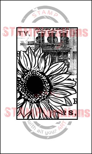 preview-framedsunflower