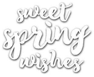preview-sweetspringwishesdie