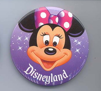 Disneyland  Minnie Mouse Park Exclusive  pin/pin