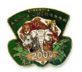 Disney's Animal Kingdom - 2000  pin/pins