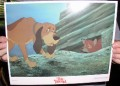 Disney Fox & the Hound hiding dated 1981 Lobby Card