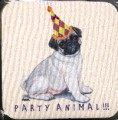 Coaster - Pug Puppy - Party Animal