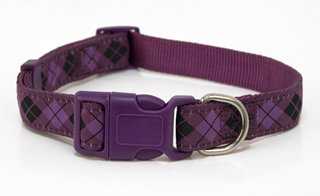 Aubergine Argyle Dog Collar - Ribbon on Nylon