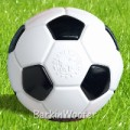 Planet Dog - Soccer Ball Chew Toy