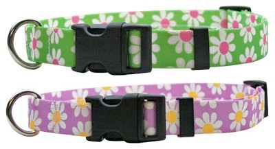 Daisy Collars - Green or Lavender