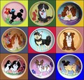 Examples of Custom Dog Bowls from Your Photo - by artist Debby Carman