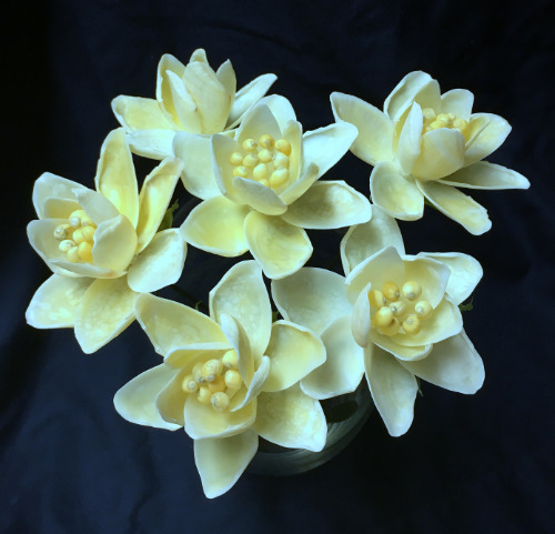 seashell%20crafts%20flowers%20home%20decor%20daffodil%20beach%20nautical