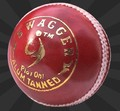 SM SWAGGER Cricket Balls - Pack of 6