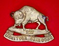 12th Manitoba Dragoons Cap Badge - FRONT.jpeg