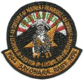US Navy VF-21 Freelancers 1944 to 1996 Sayonara Baby! Squadron Military F-14 Patch.jpeg
